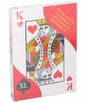 Feest kaartspellen extra groot 28 x 20 cm