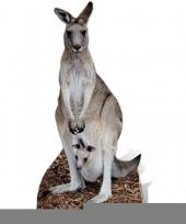 Feest kangoeroe versiering bord