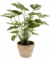 Feest kantoor kunstplant anthurium groen in pot 50 cm