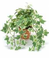 Feest kantoor kunstplant klimop groen wit in terracotta pot 30 cm