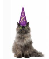 Feest katten tovenaarshoed