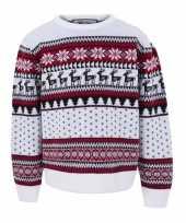 Feest kersttrui voor kinderen met nordic print wit