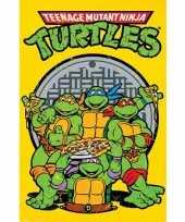 Feest kinder poster turtles