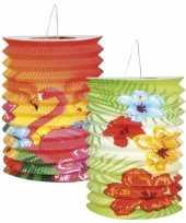 Feest kleurige hawaii lampionnetjes