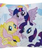 Feest kussen my little pony