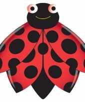 Feest lieveheersbeestje vlieger 76 x 112 cm
