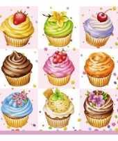Feest lunchartikelen servetten cupcakes 3 laags 20 stuks