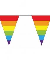 Feest luxe regenboog vlaggetjes voor binnen en buiten 10086632