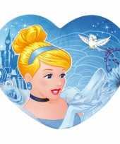 Feest meisjeskamer kussen assepoester hartje