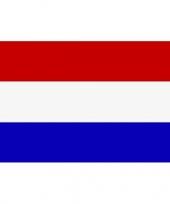 Feest mini vlag nederland 60 x 90 cm