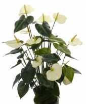 Feest namaak plant witte anthurium 80 cm