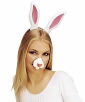 Feest nep neus van een konijn