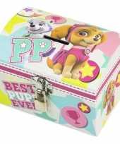 Feest paw patrol mint roze kinder spaarpot geldkistje 14 x 10 cm