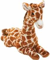 Feest pluche giraffe knuffel liggend 35 cm