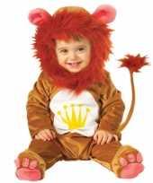 Feest pluche leeuwen pakje voor babys