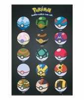 Feest pokemon poster pokeballs