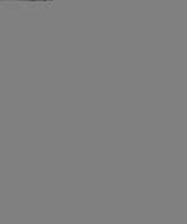Feest poloshirt bretonse streep