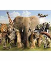 Feest poster dierenrijk afrika 47 x 67 cm 10063023