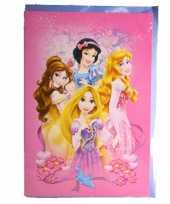 Feest princess verjaardagskaart 26 cm