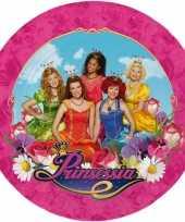 Feest prinsessia bordjes 23 cm