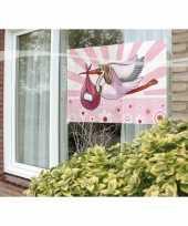 Feest raamvlag geboorte meisje