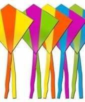 Feest rhombus vlieger in diverse kleuren