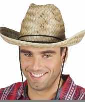Feest rieten cowboyhoed dallas voor volwassenen