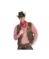 Feest rood cowboy overhemd met ruitjes