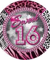 Feest roze 16 jaar wegwerpbordjes