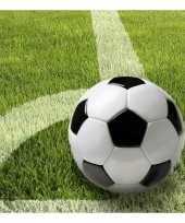 Feest servetten met voetbal afbeelding 33 cm