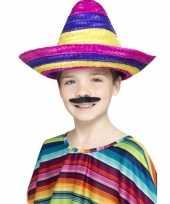Feest sombrero hoeden gekleurd voor kinderen