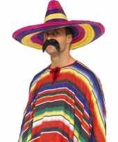 Feest sombrero hoeden gekleurd
