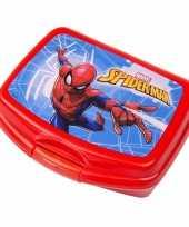 Feest spiderman lunch bakjes rood 16 5 cm