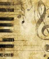 Feest thema muziek servetten 20 stuks