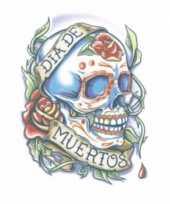 Feest tijdelijke tatoeage gekleurd doodshoofd
