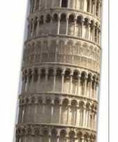Feest toren van pisa versiering bord