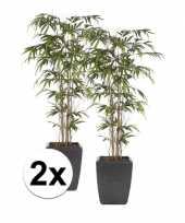 Feest tropische kunstplant bamboe promo 150 cm 2 stuks
