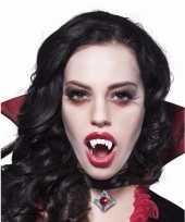 Feest vampieren gebit voor volwassenen