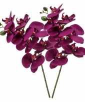 Feest violet paarse phaleanopsis vlinderorchidee kunstbloem 70 cm