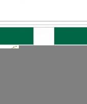 Feest vlaggenlijn mexico
