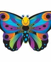 Feest vlinder vlieger gekleurd 76 x 112 cm