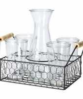 Feest water karaf met 4 glazen in mandje