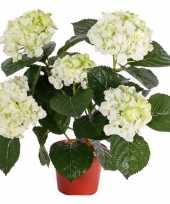 Feest wit groene hortensia kunstplant 36 cm