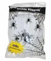 Feest wit spinnen web met spinnen