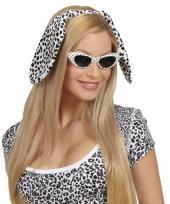 Feest wit zwarte oren dalmatier