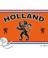 Feest wk vlag holland
