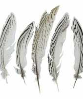 Feest woondeco fazantveren 18 cm 5 stuks 10094411