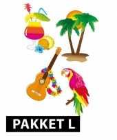 Samengesteld pakket hawaii feest groot